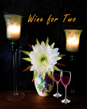 "Wine for Two  ""Honorable Mention""  &  ""Peoples Choice"""